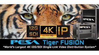 PESA Tiger Fusion