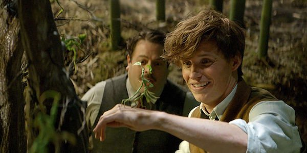 Pickett Bowtruckle Fantastic Beasts 2