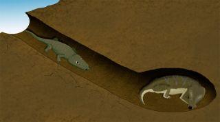illustration of mammal and amphbian in burrow 250 million years ago