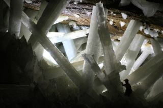A researcher wearing a hard hat is dwarfed by phone-sized crystals deep in Mexico's crystal cave.