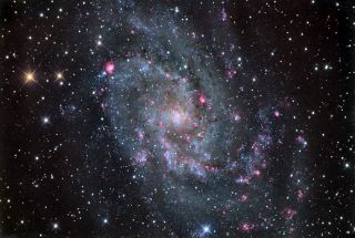 Triangulum Galaxy by Chris Schur