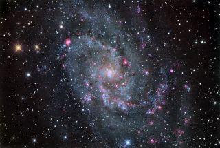Triangulum Galaxy by Chris Schur