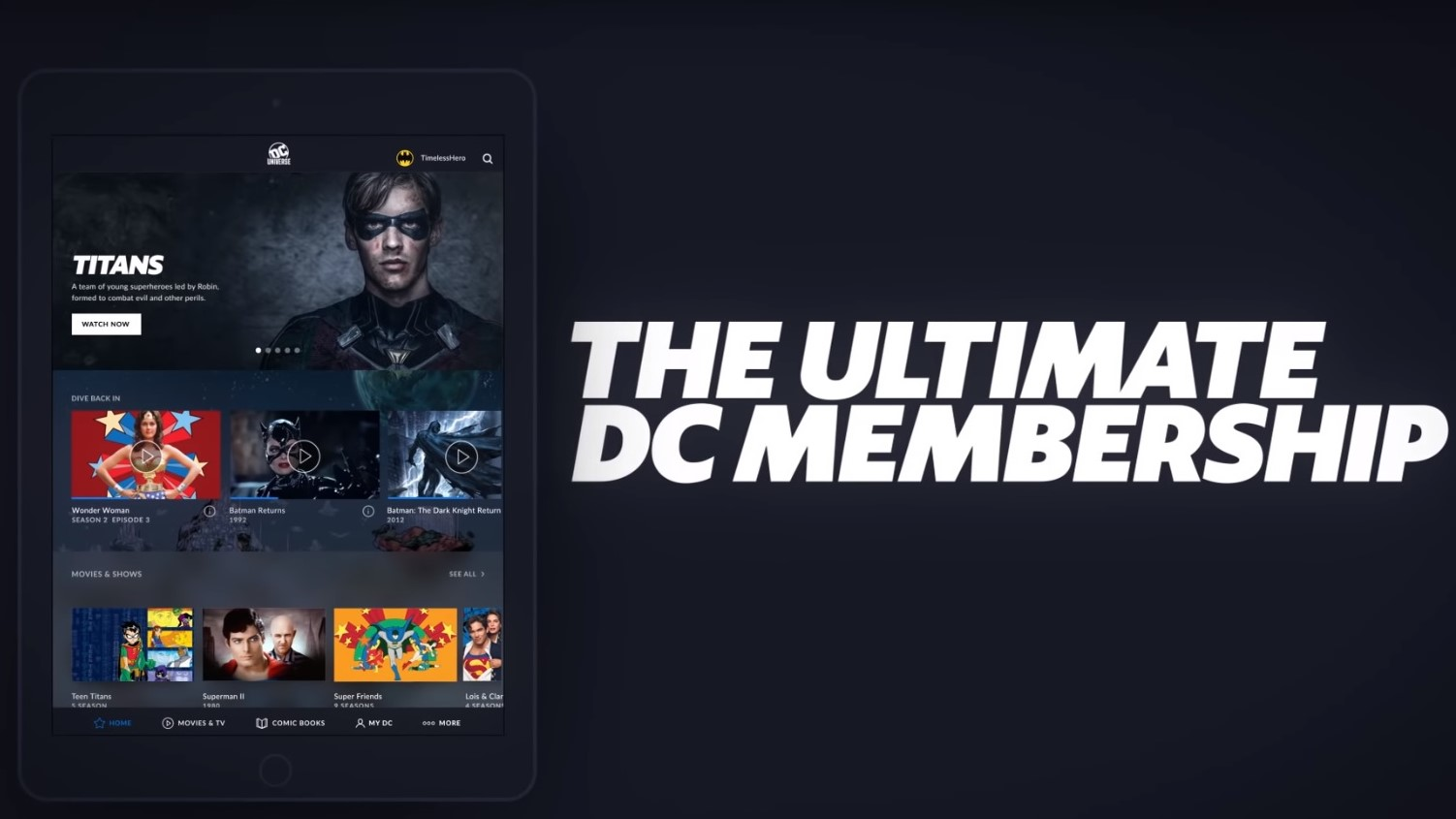 DC Universe: DC's new TV and comic book