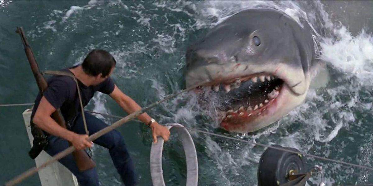 Roy Scheider in Jaws