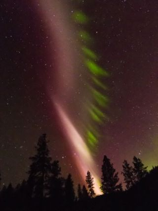 STEVE, seen here in Washington in May 2016, is an aurora-like phenomenon, but it doesn't work quite the same way — and scientists think they finally know why.