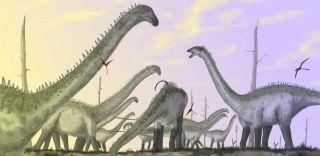 Sauropods were huge animals