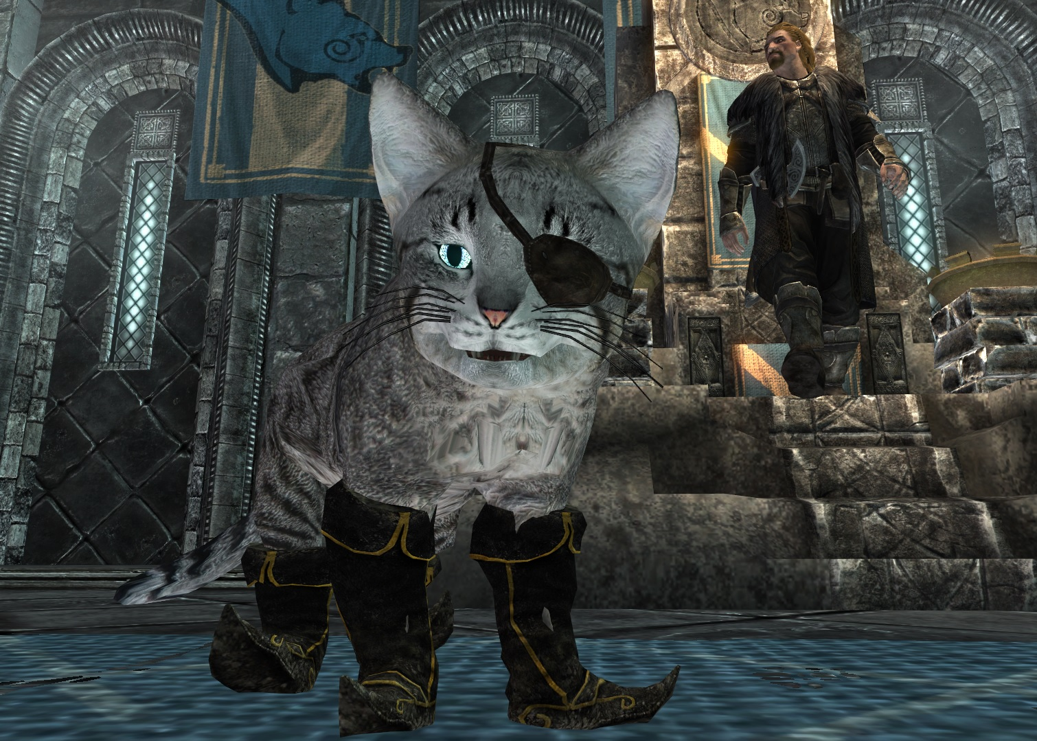 Cats of the Jarls