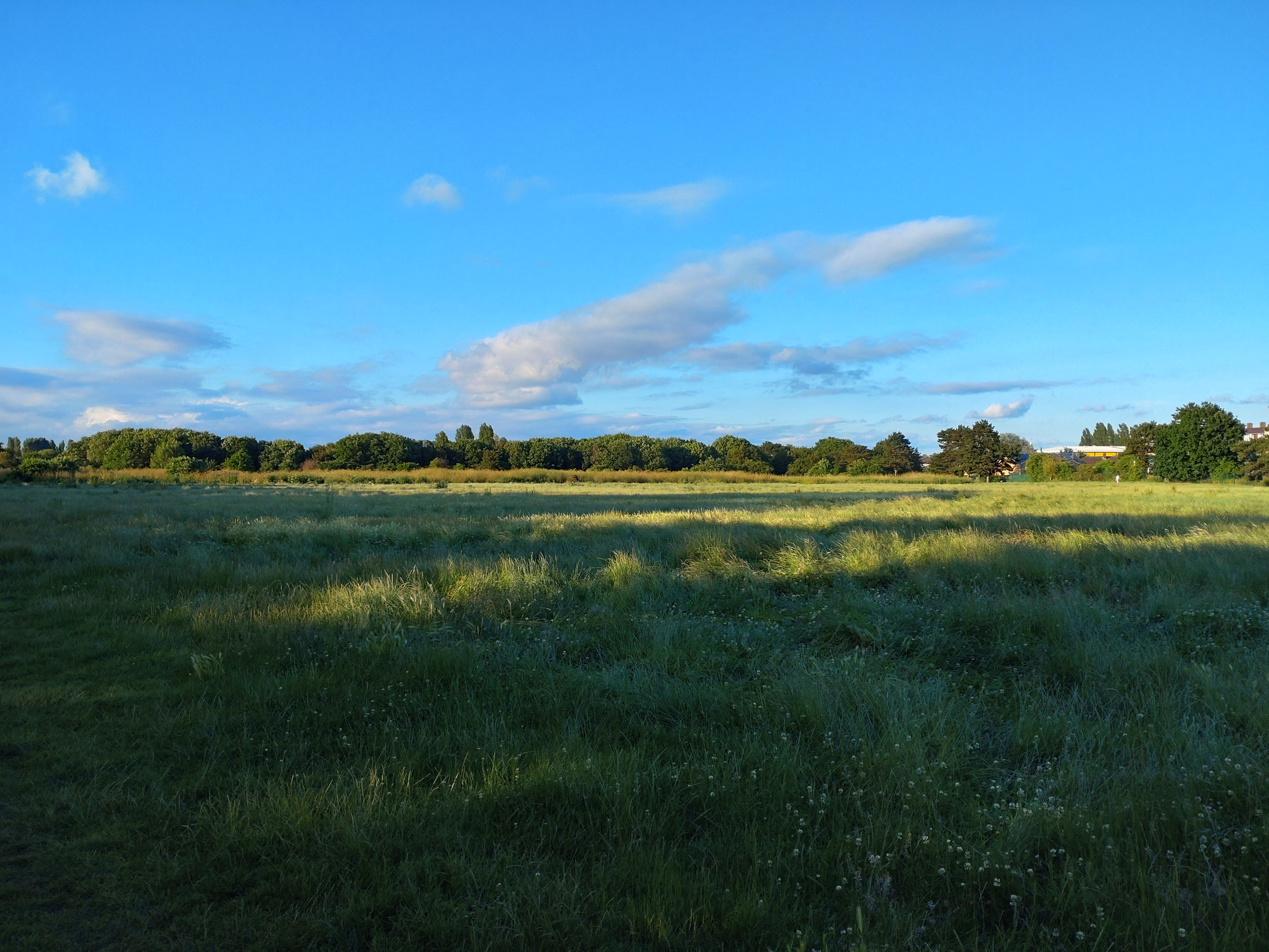 A field shot on the Xperia 10 III
