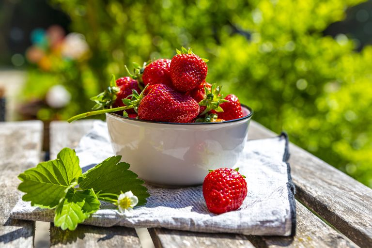 how to grow strawberries fresh strawberries in bowl