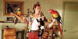 Alrighty Then! Ace Ventura 3 Has Taken A Major Step Forward