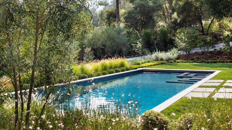 pool landscaping ideas: backyard pool surrounded by lawns and planting