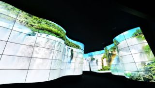 OLED Canyon at CES