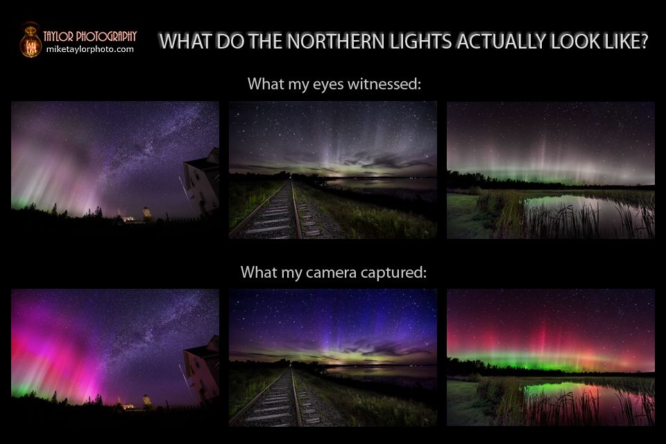 How Cameras Reveal The Northern Lights True Colors Op Ed Live