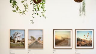 SUN Editions online marketplace for photographs