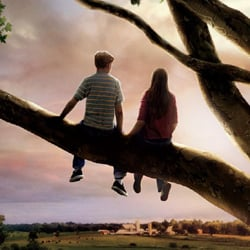 flipped poster evokes memories of first love