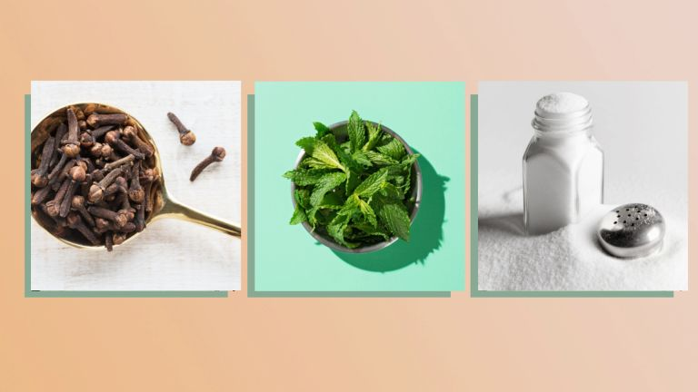 at-home toothache remedies collage