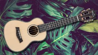 "Save 20% off Ukutune's 23"" Concert Uke – includes free shipping"