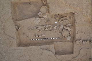 a photograph of an ancient skeleton buried in Rakigarhi in India