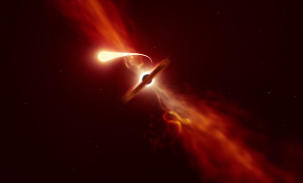 Black hole kills star by 'spaghettification' as telescopes watch