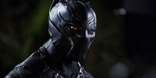 Black Panther full costume