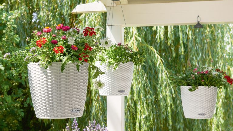 hanging basket ideas: lechuza containers