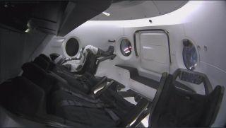 Ripley, SpaceX's Dummy astronaut