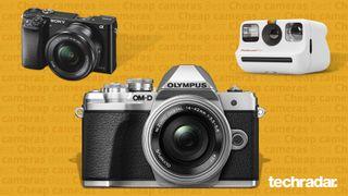 The Sony A6100, Olympus OMD-D E-M10 Mark Iv and Polaroid Go cameras