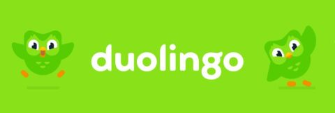 Duolingo French review