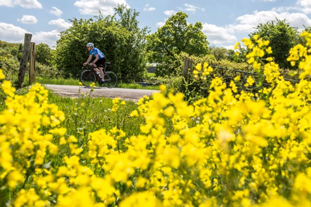 How to reduce the effects of hay fever when cycling - Cycling Weekly 6b2eeafc0