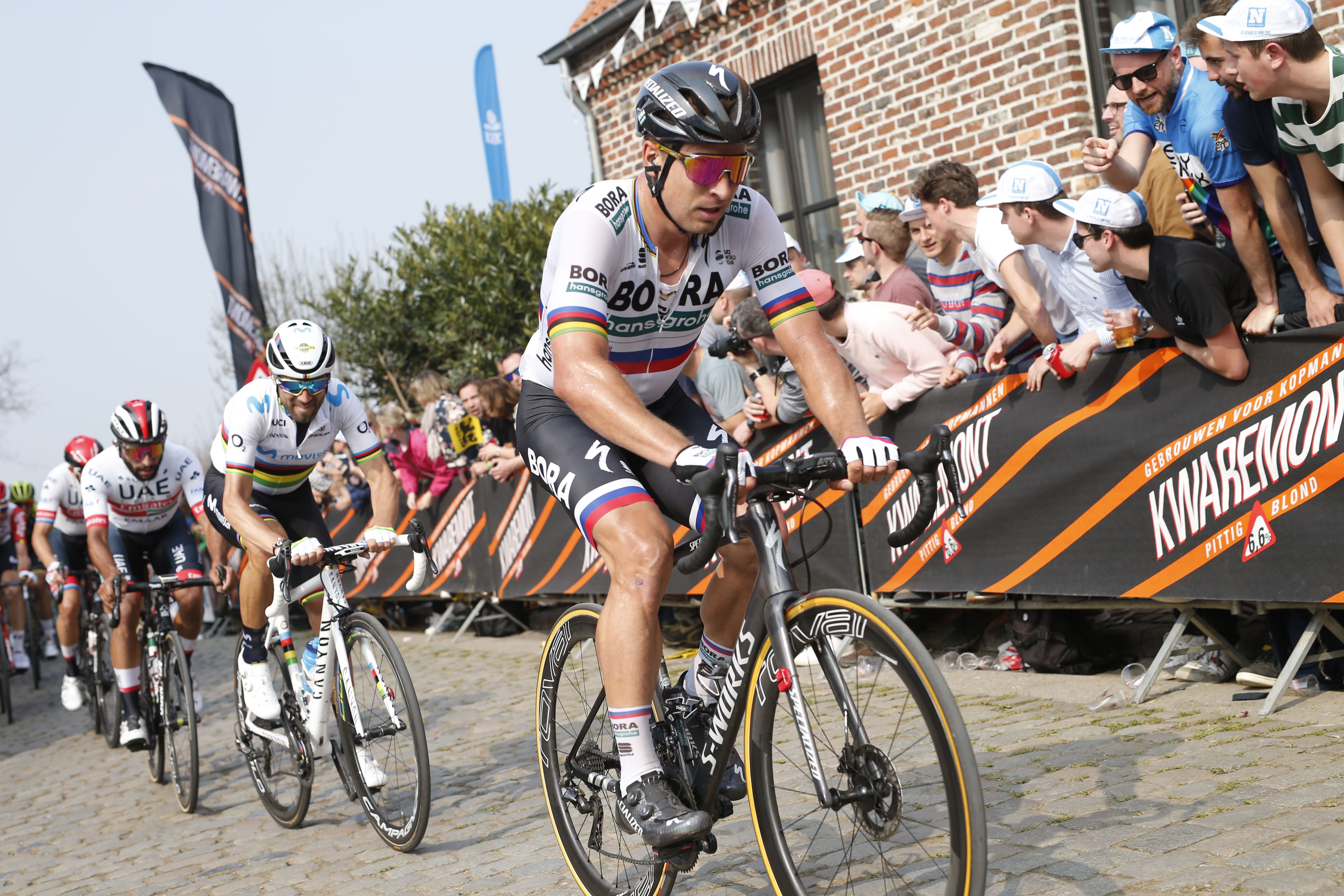 Peter Sagan: 'I am not like I was in the Tour of Flanders three years ago'