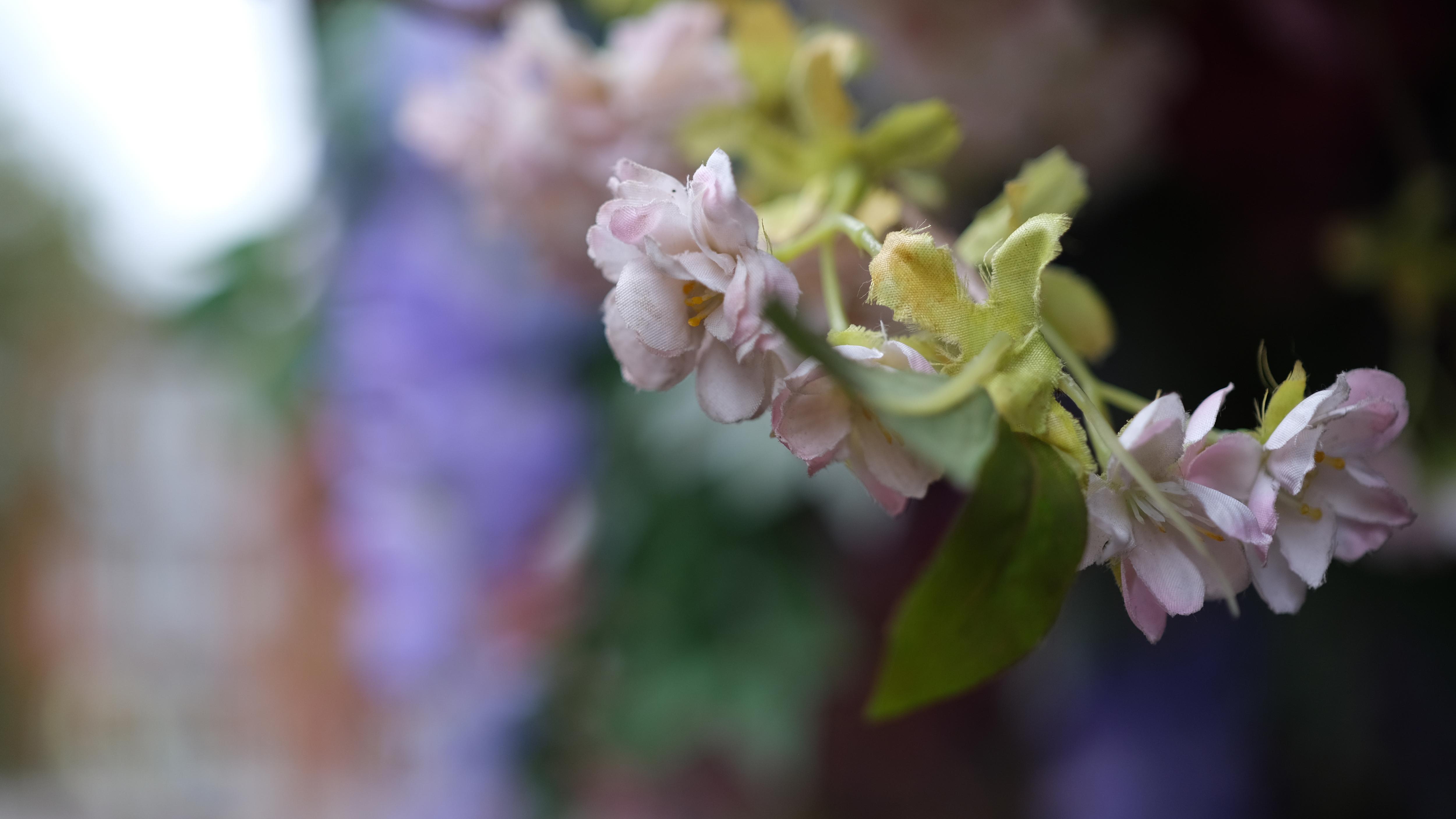 A fake flower in London's Trafalgar Square shot with the Fujifilm XF33mm f/1.4 lens