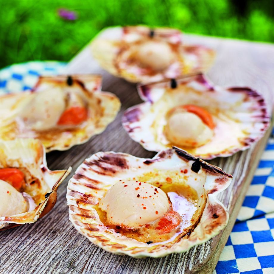 MEGHAN: Scallop recipes asian style