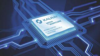 Manycore processor