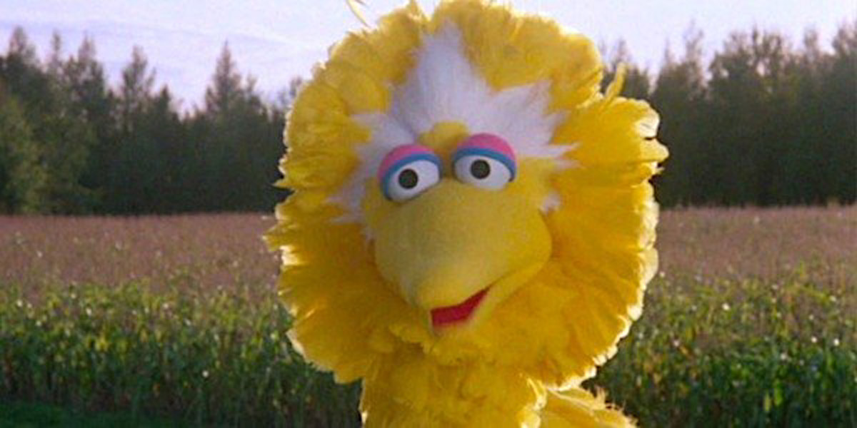 RIP Caroll Spinney: Sesame Street Fans Pay Tribute To Big Bird And Oscar Puppeteer
