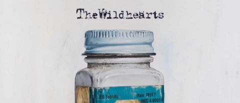 The Wildhearts: Diagnosis