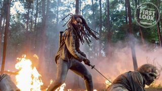 First The Walking Dead season 10 image shows Michonne cutting down zombies, naturally
