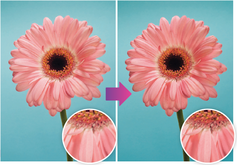 How to sharpen images like a pro using Lightroom