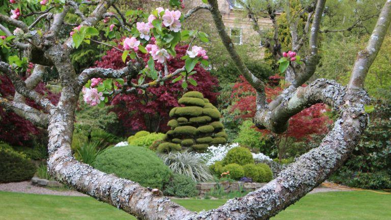 Scotland's Garden Scheme: Redcroft