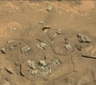 A rock spotted by NASA's Curiosity rover on Mars may look like a femur bone, but is actually just a weathered Martian rock formation.
