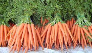 carrots-110103-02
