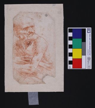 """This is Leonardo Da Vinci's """"Uomo della Bitta,"""" one of six drawings by the master recently revealed to host complex microbiomes."""