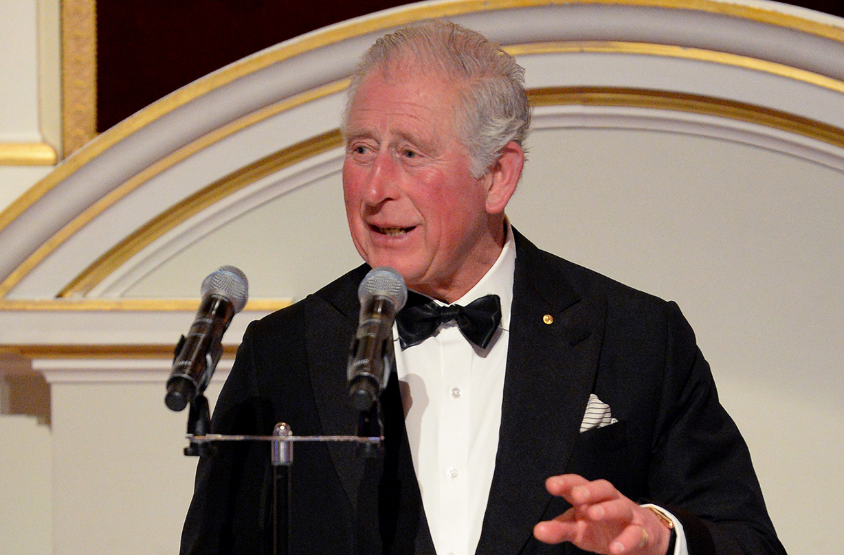 Prince Charles speaks out on coronavirus for first time since recovering