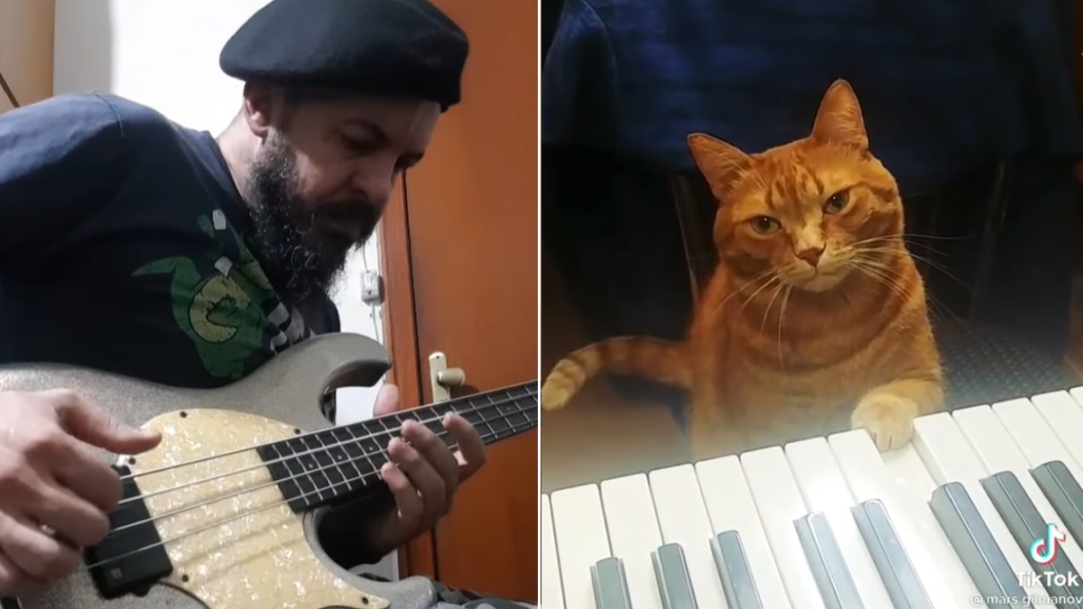 Watch this cat write an actually-pretty-decent bass solo on piano
