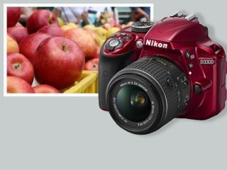 How to Use the Nikon D3300 - Tips, Tricks and Manual