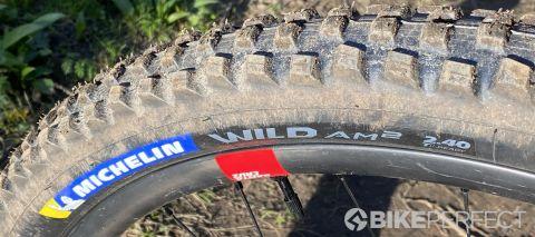 Michelin Wild am2