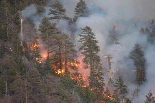 weather, wildfire season