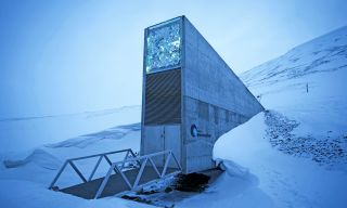 The Svalbard Global Seed Vault, located underground on a remote island in the Arctic Circle, is the world's largest security storage for seeds.