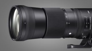 The side of the Sigma 150-600mm f/5-6.3 DG OS HSM | S on a grey background