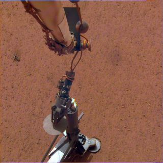 The burrowing heat probe of NASA's InSight Mars lander on the Red Planet's surface.
