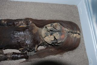 Chinchorro mummy with black ooze